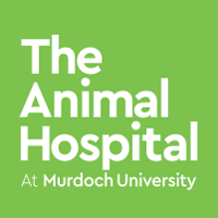 Animal Hospital Emergency Murdoch